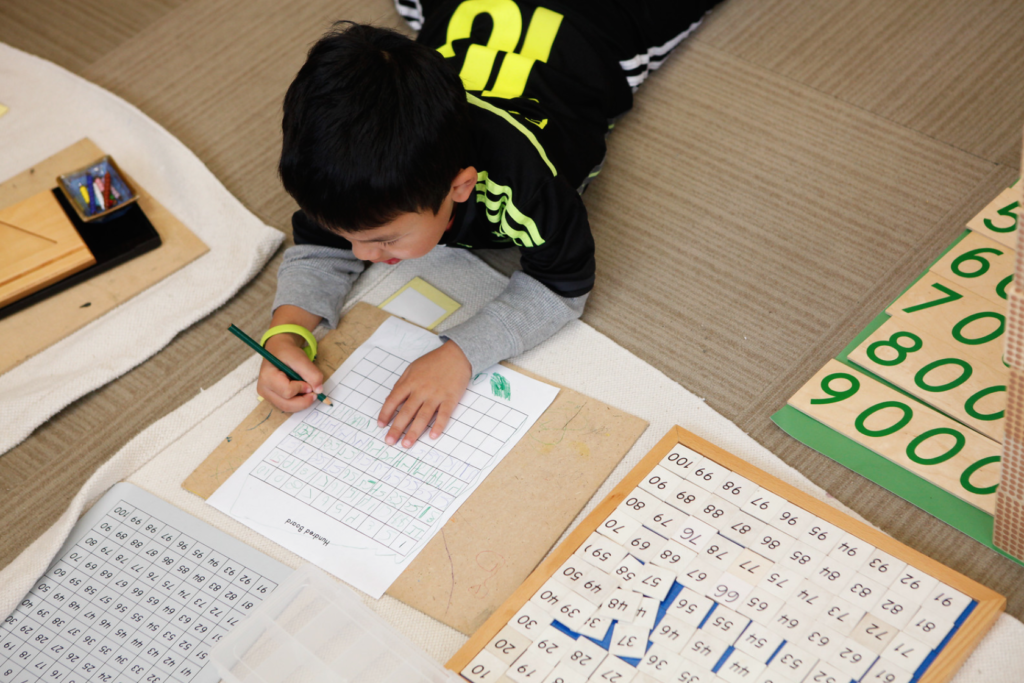 Understanding through visualization is a significant part of the Montessori learning process.